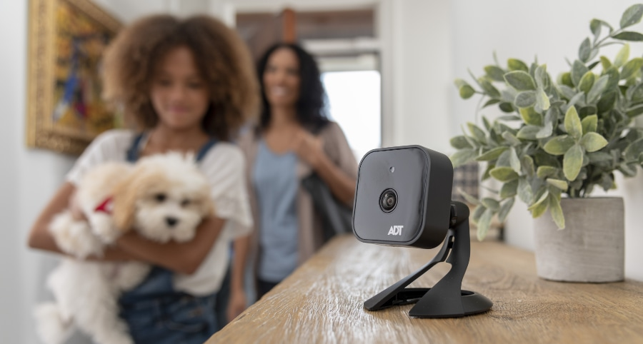 Mesa home security camera