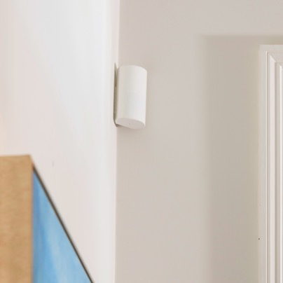 Mesa security motion sensor