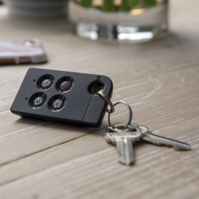 Mesa security key fob